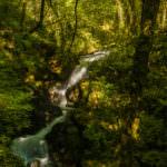 Cascada primaveral