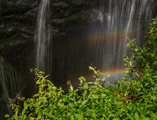 Cascada y arco iris