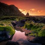 Verde y mar